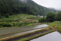 稲の有る里山 ~雨情 - katsuのヘタッピ風景