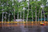 小樽散歩 #124  雨の公園 - ainosatoブログ02