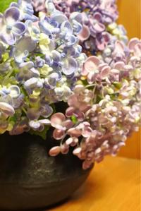 オタフク(紫陽花)を南部鉄器の茶こぼしに生けてみる - ヒトリゴトゴハン