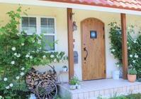 玄関隣2つのつるバラ♪ - ペコリの庭 *