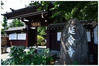 延命寺とジャスミントライフル -  one's  heart