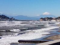 七里ガ浜にまた新しいショップがオープンです! - PETIT POINT CINQ のプチコラム