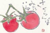 ミニトマト 「サクランボみたいね」 - ムッチャンの絵手紙日記