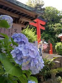 江の島で:Passed Through the GATEs in Enoshima - 演劇生活しちゃってます。Miyuki's Blog