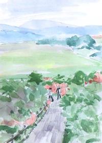 高層湿原のツツジ - ryuuの手習い