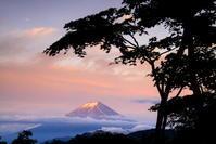 30年6月の富士(6)大峠の富士 - 富士への散歩道 ~撮影記~