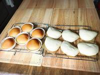 白神こだま酵母パン教室 -     白神こだま酵母パン教室 こだわりRINAのパン工房