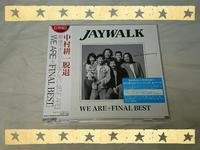 JAYWALK / WE ARE + FINAL BEST - 無駄遣いな日々