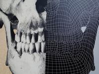 「人体」神秘への挑戦特別展・・・国立科学博物館へ見に行った - 『私のデジタル写真眼』