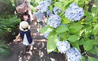 水無月、鎌倉にて - またいつか旅に出る