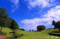 ゴルフ場で笹竹をゲット!(^^)! - 自然のキャンバス