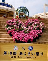 八景島あじさい祭り - マーブルDiary