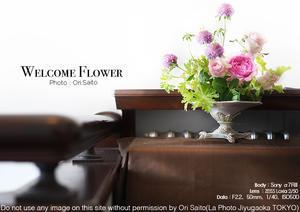 花溢るるイギリス館は薔薇の香りに満ちて。sony α7R III + ZEISS Loxia 2/50 - 東京女子フォトレッスンサロン『ラ・フォト自由が丘』-写真とフォントとデザインと現像と-