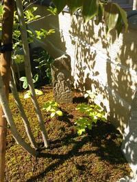 後少しの所まで庭が出... - 庭師ののんびり紀行