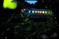 ホタル列車 - びっと飴