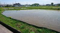 田植えの季節 - 雨の日には雨をきいて