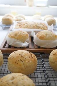 フォカッチャ続々焼けています♪ - launa パンとお菓子と日々のこと