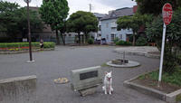 Vol.1351 渡辺山王町公園 - 小太郎の白っぽい世界