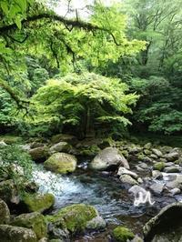 環境の持つ力 - 菫青石に天の川 小さな庭から地球を眺める