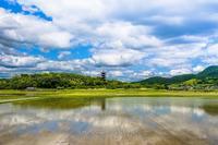 備中国分寺田んぼに水が入る - 道草Photo Life2