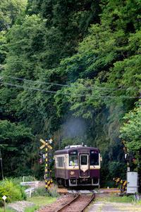 山に抱かれて汽車は往く~13 - :Daily CommA: