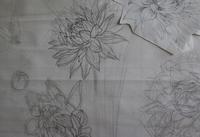 ダリア描き始め - 絵と庭