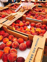 季節の果物 - 肉じゃが日和