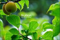 fruition - すずちゃんのカメラ!かめら!camera!