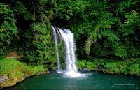 新緑の慈恩の滝 - A  B  C