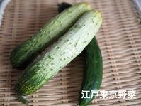 東京伝統野菜の勉強 - 『with F』わたしたちの日常にたくさんのwithを...お花で癒やされ、発酵やさしいごはんで自分をつくり、旅で楽しむ☆