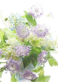 平常心、人間性を大切に - お花に囲まれて