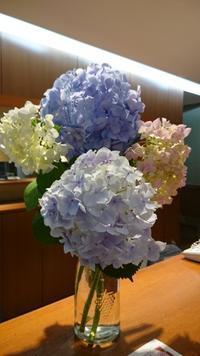 今週のランチメニューは『夏の四色丼』です♪ - レーイグラッツェふじ スタッフブログ