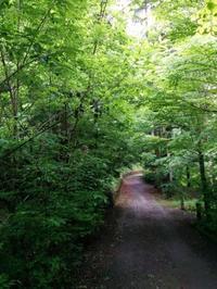 軽井沢別荘のお庭造り - aile公式ブログ