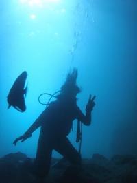 体験ダイビング - 沖縄ダイビング&フィッシング DSA ブログ