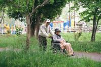 リハビリ老夫婦の車椅子散歩 - 照片画廊