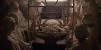 ジェイコブス・ラダー(1990年)ヤコブの階段を登った男 - 天井桟敷ノ映像庫ト書庫