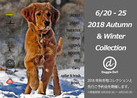 2018AWコレクション&ご予約会 - Doggie Do!! / good dog and hello cat !!