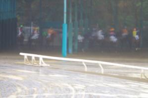 雨の待機所 - 園田競馬写真館「ここがゴール」