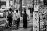 歩く花に - SCENE