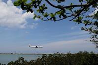 もうすぐ梅雨明け - 南の島の飛行機日記