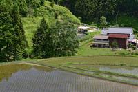 稲の有る里山 ~青空のもとで - katsuのヘタッピ風景