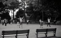 公園の朝 - 心のカメラ   more tomorrow than today ...