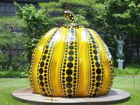草間彌生展@松本市美術館いわさきちひろ美術館 - 55歳から専業主婦はじめました