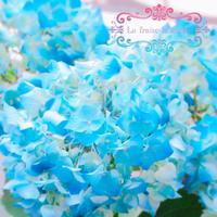 紫陽花 - La fraise blanche ~カルトナージュ&ハンドメイド~