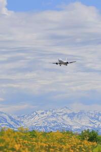 山が見たい、空が見たい ~旭川空港~ - 自由な空と雲と気まぐれと ~ from  旭川空港 ~