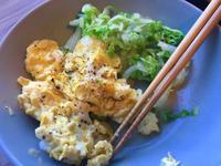 NZ:最近の朝ごはん - bluecheese in Hakuba & NZ:白馬とNZでの暮らし
