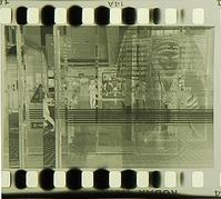ネガ画像 Tri-X400 ×Kodak Xtol原液 - モノクロフィルム 現像とプリント 実例集