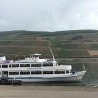 ビンゲンへの旅(7)〜ナーエ河からルーペルツベルグ(Rupertsberg)へ - 旅するさかな