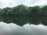 香川・岡山野池巡りの旅 - WaterLettuceのブログ