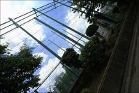 久し振りの青空の東京でした - 生きる歓び Plaisir de Vivre。人生はつらし、されど愉しく美しく